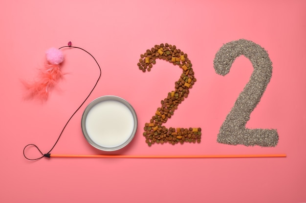 Os números 2022 são dispostos com objetos para animais em um fundo rosa.