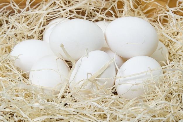 Os ovos brancos de chiken fecham-se acima.