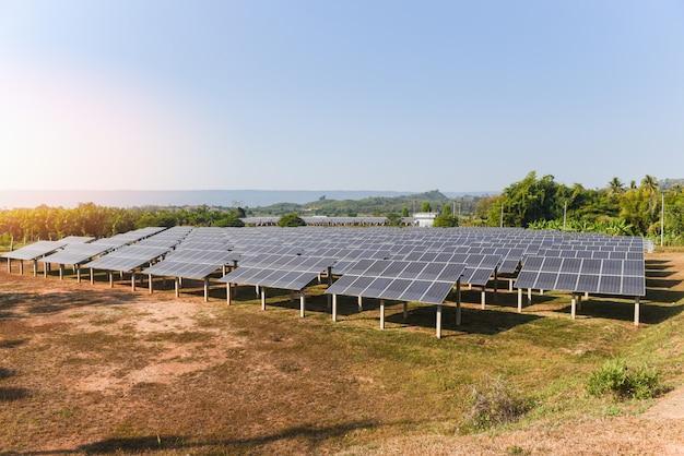 Os painéis solares na fazenda solar com iluminação verde da árvore e do sol refletem - energia da célula solar ou conceito de energia renovável