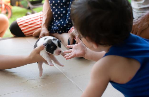Os pais dão filhote de cachorro para o garoto pela primeira vez
