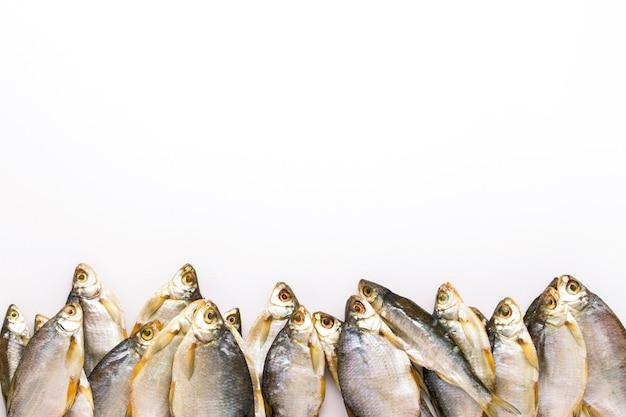 Os peixes secados alinharam em uma fileira em um fundo branco. configuração plana