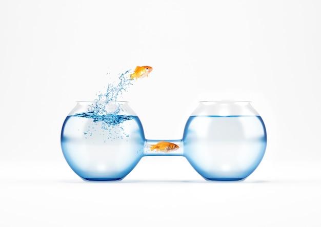Os peixes vermelhos migram para um novo galheteiro. conceito de forma fácil e inteligente de mudança e estratégia.