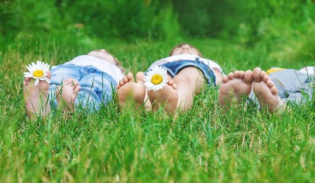 Os pés das crianças com camomila na grama verde.