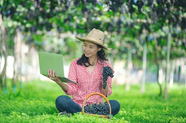 Os produtores de uva estão felizes em vender uvas de mercado on-line