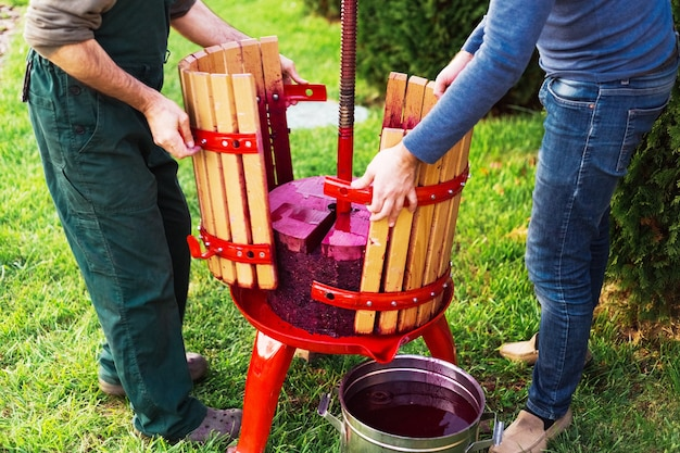 Os produtores de vinho abrem a prensa de vinho com mosto tinto, parafuso helicoidal após pegar o suco do mosto de uva.