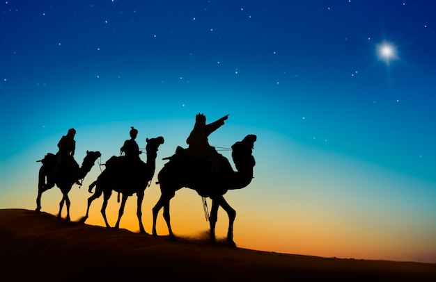 Os três reis seguindo a estrela do norte