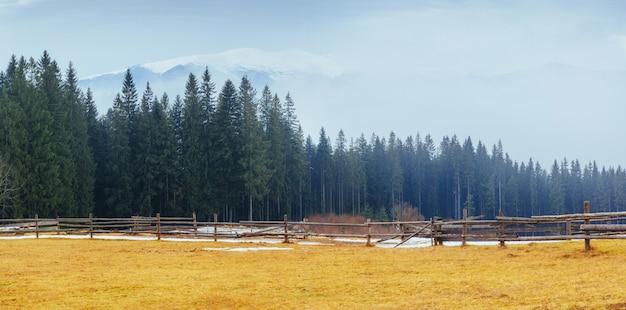 Os últimos dias de inverno nas montanhas da ucrânia, névoa espessa. cárpatos.