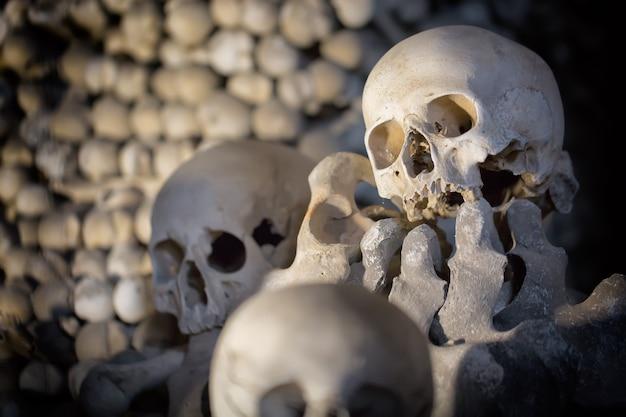 Ossos e crânios humanos como pano de fundo