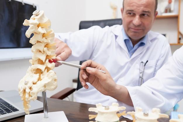 Osteopata apontando para o modelo de inflamação da coluna no consultório médico