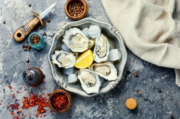 Ostras abertas frescas, frutos do mar