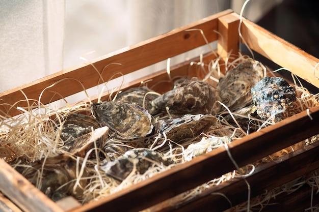 Ostras em uma caixa de madeira.