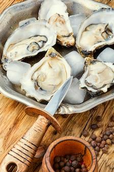 Ostras frescas abertas, frutos do mar