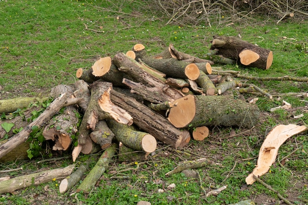 Outdoor, pilha de madeira para a lareira