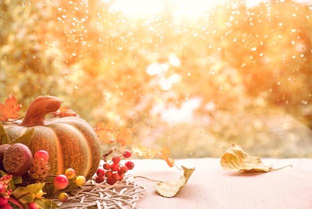 Outono ainda vida com abóboras e folhas secas em uma placa de janela