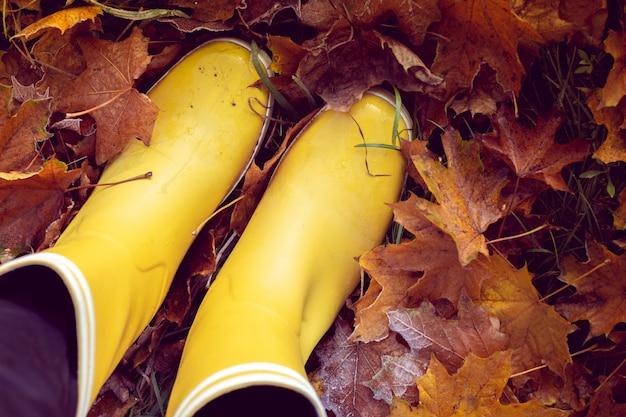 Outono ainda vida com botas de borracha amarela