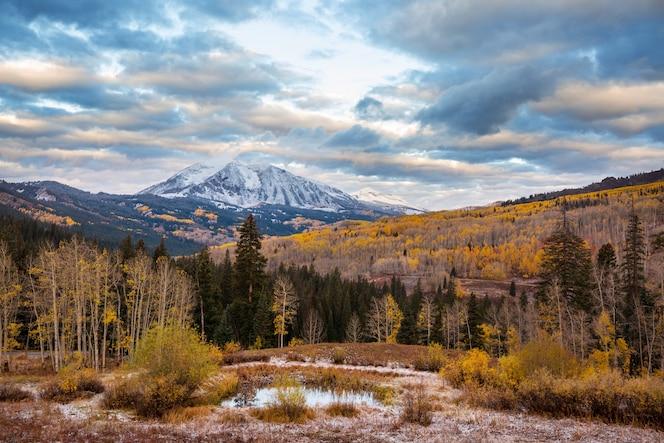 Outono amarelo colorido no colorado, estados unidos. outono.