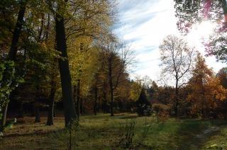 Outono brilhante