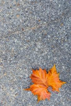 Outono brown e folha alaranjada na estrada concreta do asfalto.