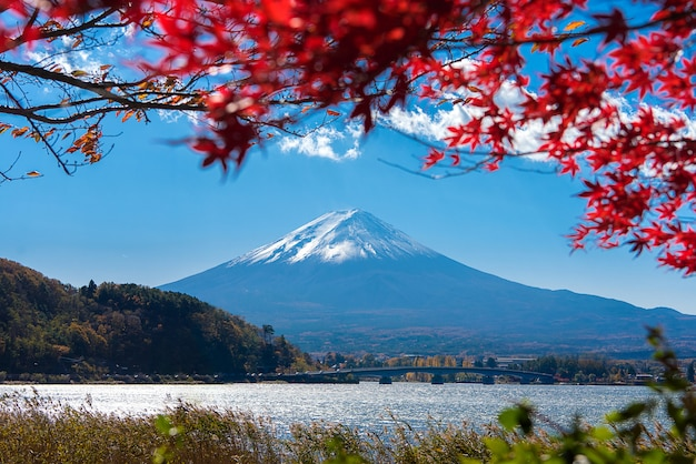 Outono colorido no monte fuji, japão - lago kawaguchiko é um dos melhores lugares no japão