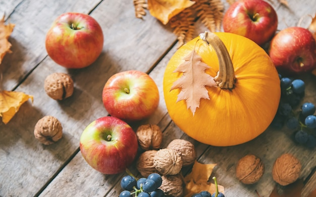 Outono com abóbora. dia de ação de graças.