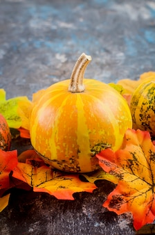 Outono com abóboras e folhas