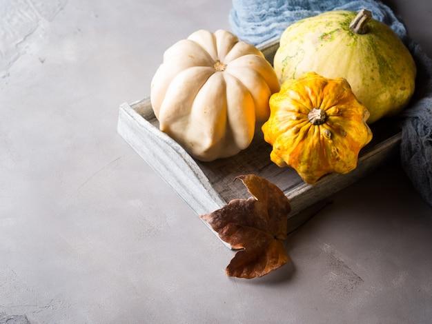 Outono com abóboras na bandeja
