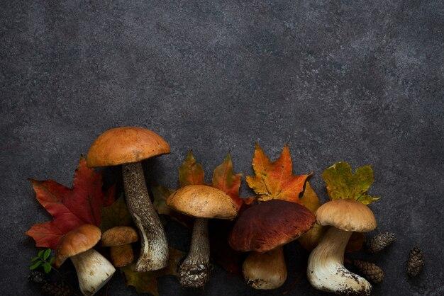 Outono com folhas e cogumelos selvagens na floresta