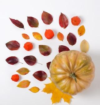 Outono composição de folhas vermelhas e amarelas vibrantes e abóbora laranja