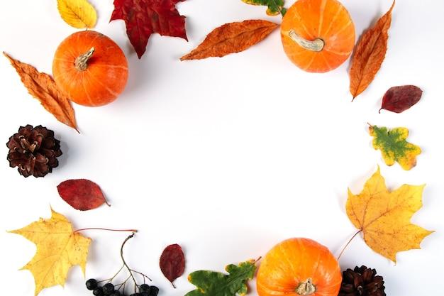 Outono de folhas, frutos e abóboras.