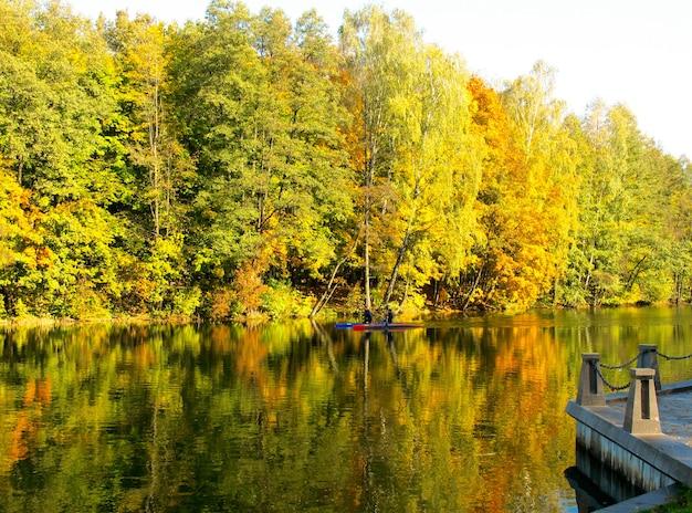Outono dourado no reflexo do lago na água da folhagem amarela das árvores canoas brilhantes no