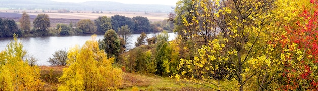 Outono dourado. paisagem de outono com plantas coloridas à beira do rio, panorama