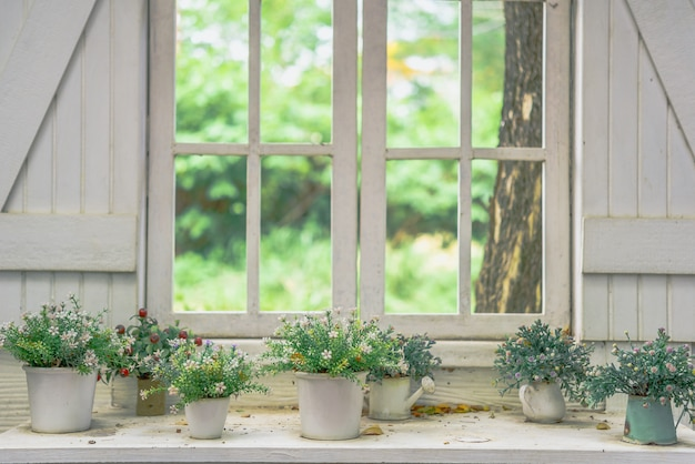 Outono flores no pote no peitoril da janela, rua decorada com flores