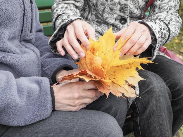 Outono juntos. nas mãos do pensionista. mãos amiga, cuidar do conceito de idosos.