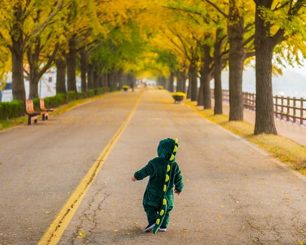 Outono na estrada da árvore de asan gingko em seoul, coreia do sul.