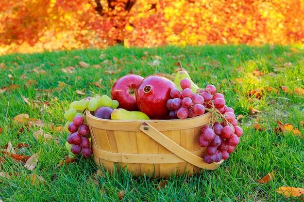 Outono, natureza morta, com, frutas, em, um, cesta vime, e, maçãs, pêras, uvas