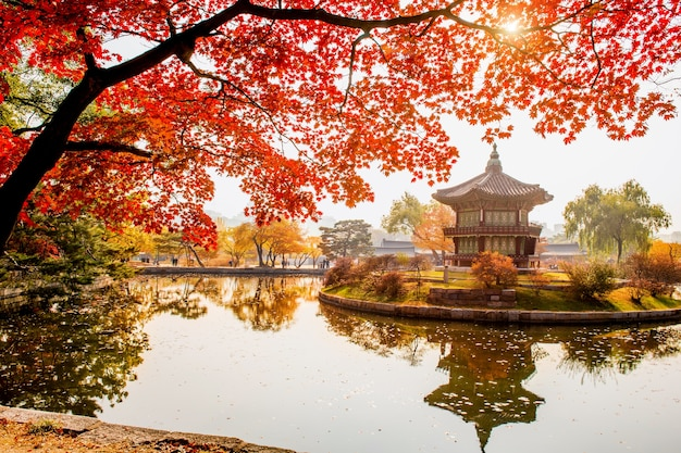 Outono no palácio gyeongbokgung, seul na coreia do sul
