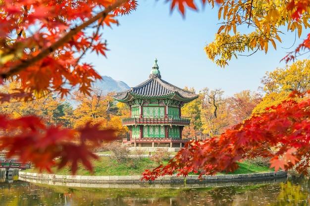 Outono no palácio gyeongbukgung, coreia. Foto gratuita