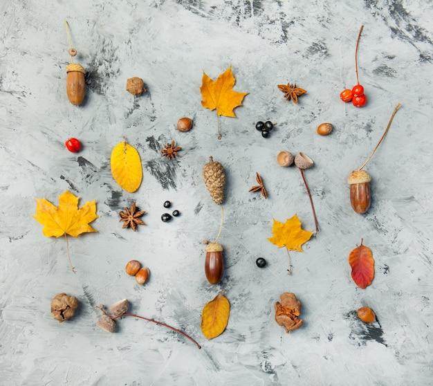 Outono, outono, apartamento, leigo, vista superior