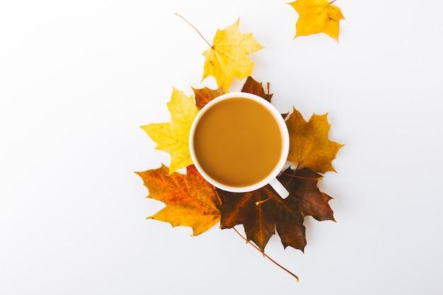 Outono plano colocar plano de fundo em branco