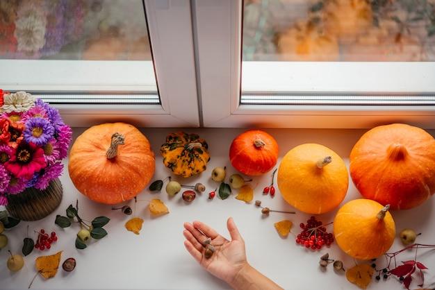 Outono plano deitado com as mãos da criança segurando bolotas, abóboras e flores de outono