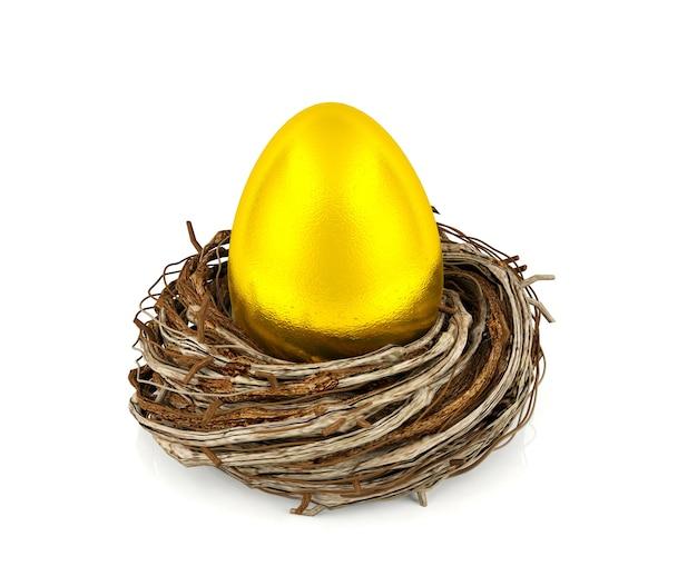 Ovo de ouro no ninho, investimento e conceito financeiro