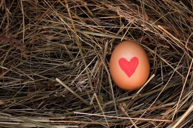 Ovo de páscoa close-up com coração pintado