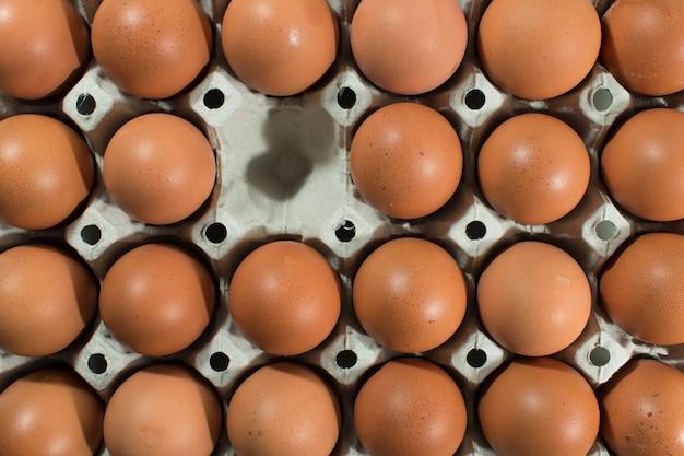 Ovo, um ovo faltando