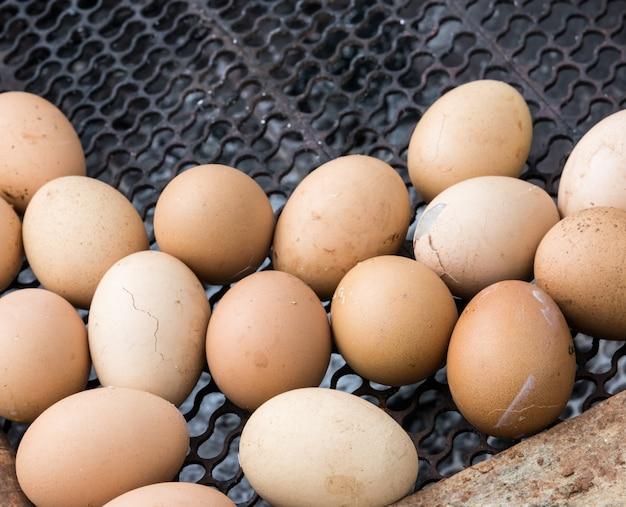 Ovos assados