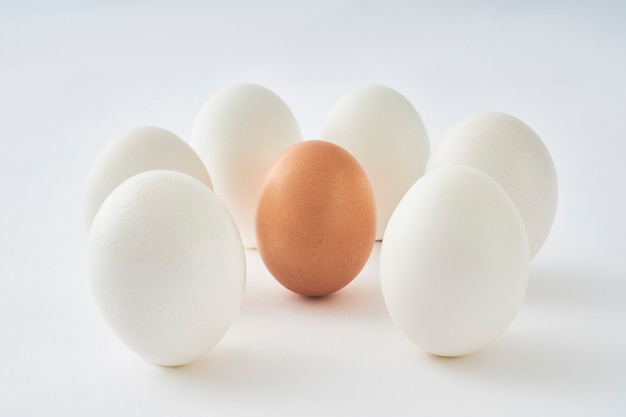 Ovos brancos em torno do ovo marrom no fundo branco.
