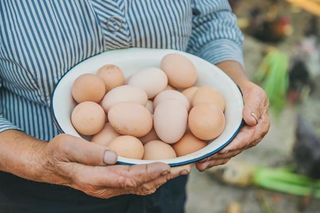 Ovos caseiros nas mãos da avó