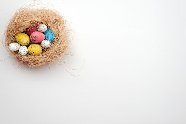 Ovos da páscoa coloridos no ninho do `s do pássaro.