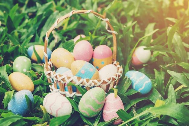Ovos da páscoa e cesta coloridos na grama verde com luz solar.