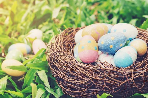 Ovos da páscoa e ninho coloridos na grama verde com luz solar.