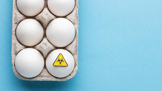 Ovos de alimentos modificados por ogm